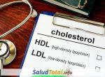 ¿Cuales Son Las Diferencias Entre El Colesterol hdl y ldl?