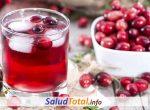 Beneficios del Jugo de Arándano (Para que Sirve el Arándano Rojo)